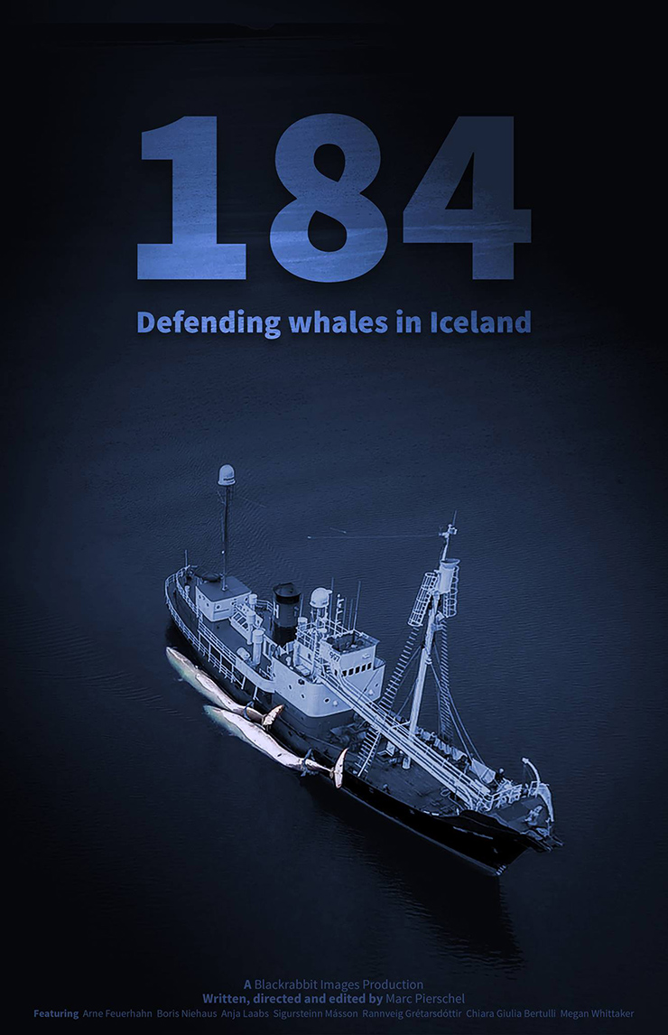 184 - Defending whales in Iceland