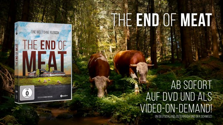 Ab sofort auf DVD und als Video-on-Demand